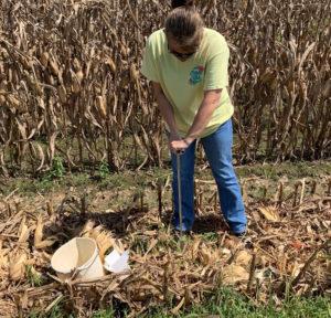 soil sampling in the fall for carbon soil analysis