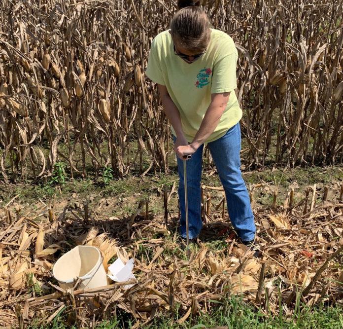 soil sampling in the fall